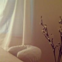 Arboretum-charlotte-massage